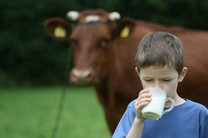 Süt üretimi Ağustos'ta düştü