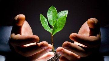 Girişim yatırımları 3'üncü çeyrekte yüzde 44 azaldı