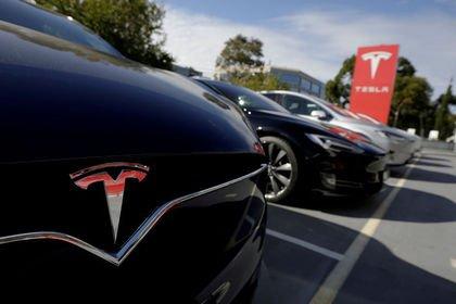 Tesla batarya fabrikası kurmak için Çin'de araz...