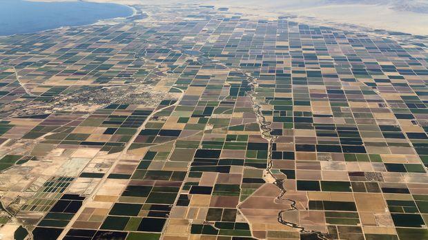 Hedefte 8,5 milyon hektar araziyi toplulaştırmak var