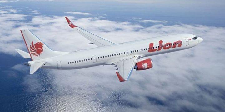 Endonezyada yolcu uçağının denize düşmesi 3