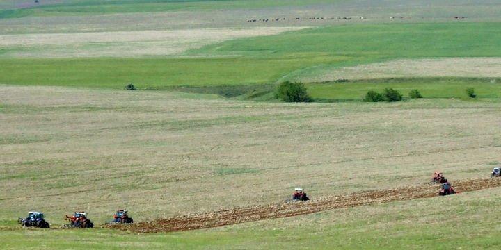 Hazineye ait tarım arazileri için 90 bin başvuru