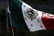 Meksika Merkez Bankası politika faizini 25 baz puan artırdı