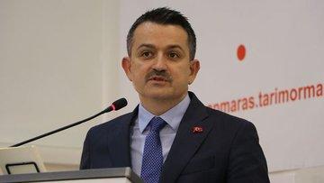 Pakdemirli: Türkiye'nin buğday üretimi kendi kendine yeterli