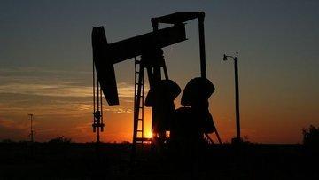 Cezayirli petrol şirketi Nijer'de petrol rezervi buldu