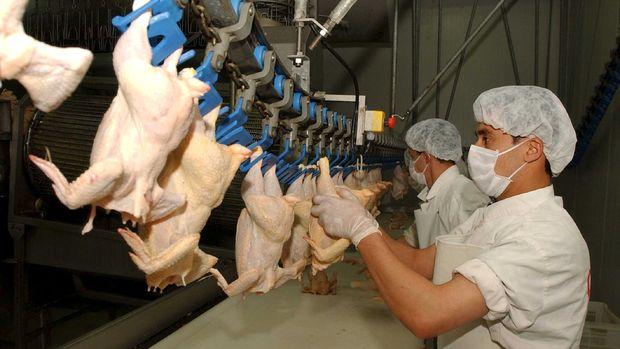BESD-BİR: Beyaz ette yüzde 35'e varan indirim yapıldı