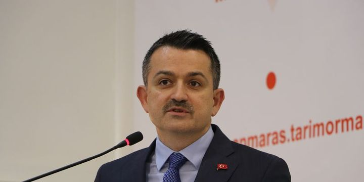 Pakdemirli: 1 sene daha Türkiye