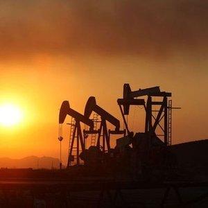 S. ARABİSTAN: OPEC'İN ÜRETİMİ AZALTIP AZALTMAYACAĞINI SÖYLEMEK İÇİN ERKEN