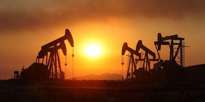 S. Arabistan: OPEC