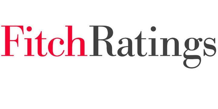 Fitch 4. çeyrek ve 2019