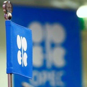OPEC KARARINI YARIN AÇIKLAYACAK