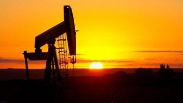 """ABD ile Suudi Arabistan """"petrol piyasasındaki gelişmeleri..."""