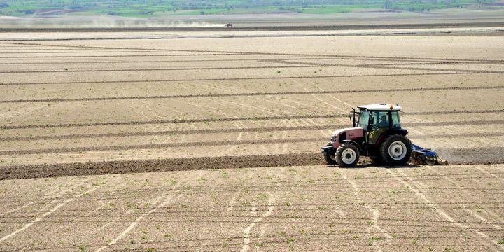 Tarımda yeni eylem planı açıklandı