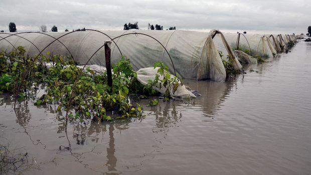 Sel ve hortum tarım arazilerini vurdu