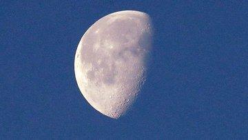 Çin'in Ay'da ektiği pamuk tohumları filizlendi