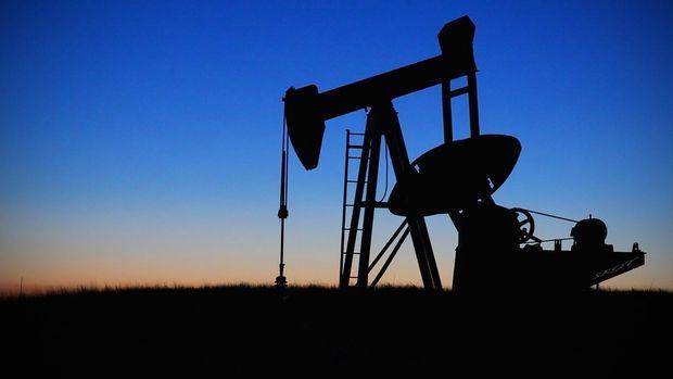 Petrol ithalatı Kasım'da azaldı