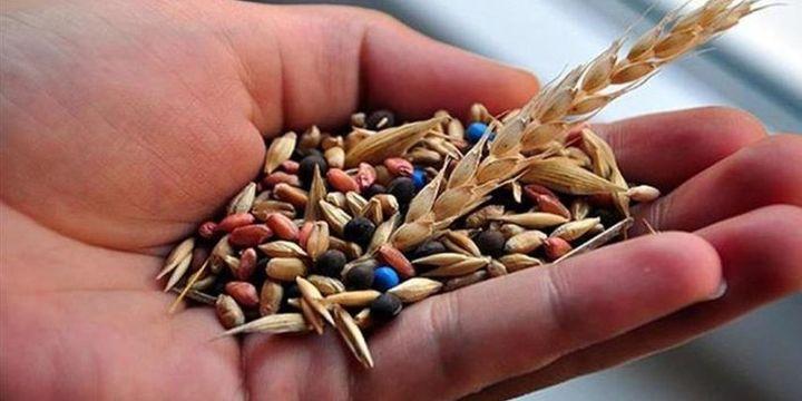 """""""Yerli tohum gıda fiyatlarını düşürecek"""""""