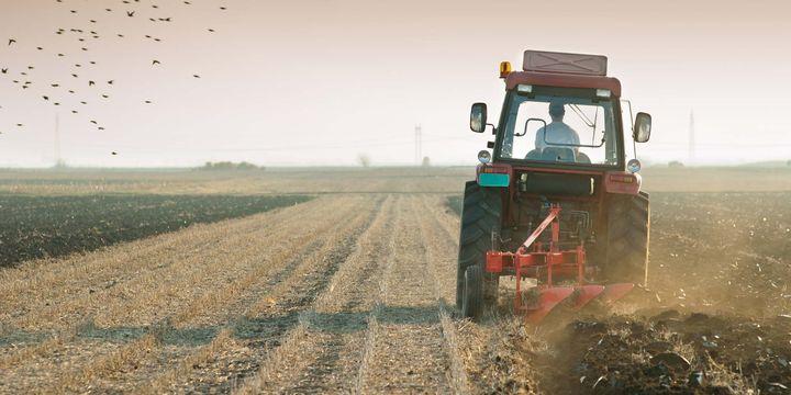 Tarım-ÜFE Ocak ayında %8,3 arttı
