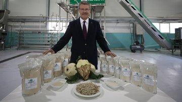 Pancar Şekeri Üreticileri Derneği kuruldu