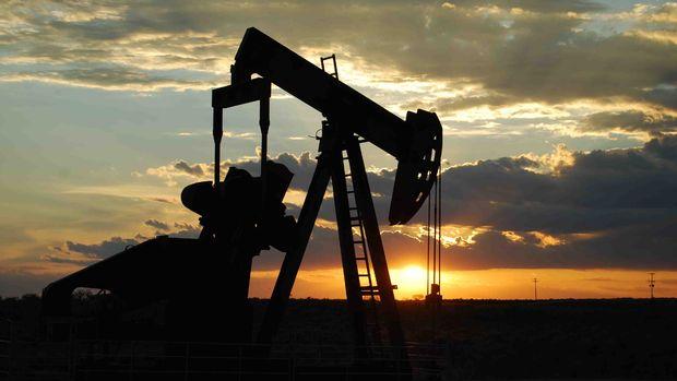 Petrol arama ruhsatı kararları