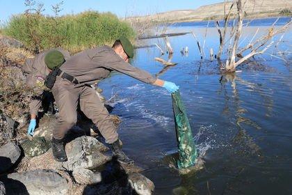 Kaçak kurbağa avına 7 bin 900 TL ceza