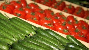 FAO/Selışık: Çiftçi örgütlenirse gıda fiyatları düşer