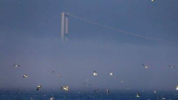 İstanbul'da sis nedeniyle bazı vapur seferler iptal edildi