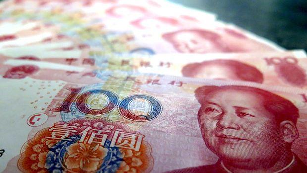 Gelişen ülke para birimleri karışık seyretti