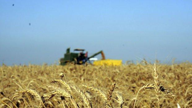 Küresel gıda fiyatları Mart'ta istikrarlı seyretti
