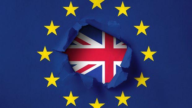 AB Brexit ertelemesi için gerekçe istiyor