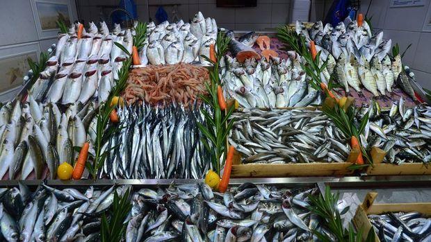İSKOMDER/ Uçan: Balıkçılar sezonu yüzde 80 verimlilikle kapattı