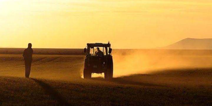 Türkiye Ürün İhtisas Borsası aracılık faaliyetlerine düzenleme