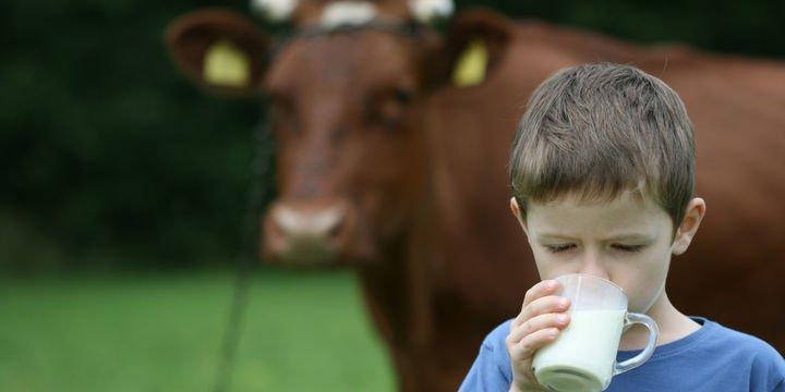 Süt üretimi Mart