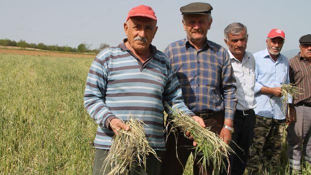 Afet mağduru çiftçiler borçlarının faizsiz ertelenmesini istiyor