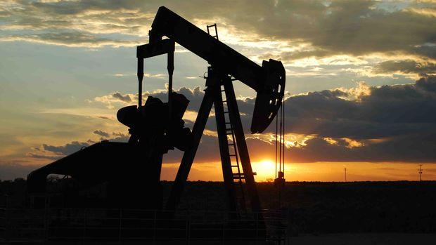 ABD'den Çinli petrol şirketine