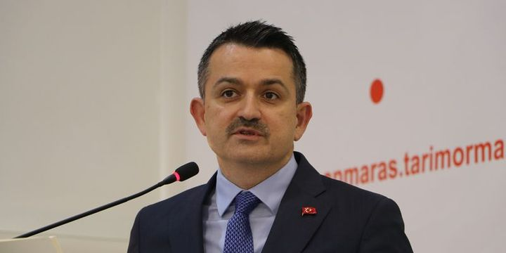 Pakdemirli: Türkiye