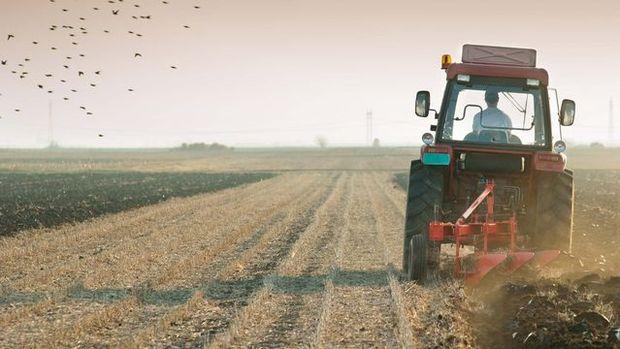 Hazine'ye ait tarım arazileri kullanıcılara satılacak