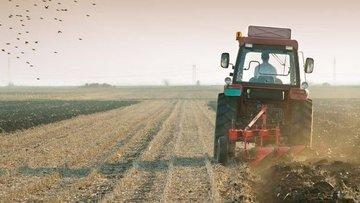 Tarım ÜFE Temmuz'da düştü