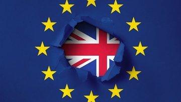 Serbest dolaşımı sonlandırma kararı İngiliz hizmet sektör...
