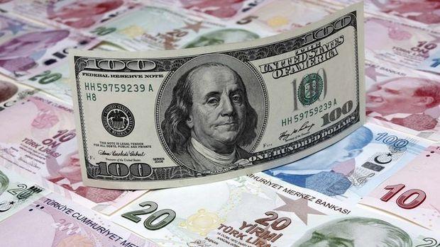 Dolar/TL hafif geriledi