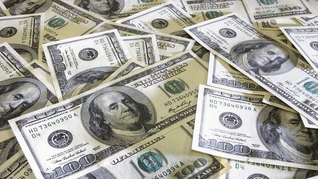Merkez'in brüt döviz rezervleri 600 milyon dolar azaldı