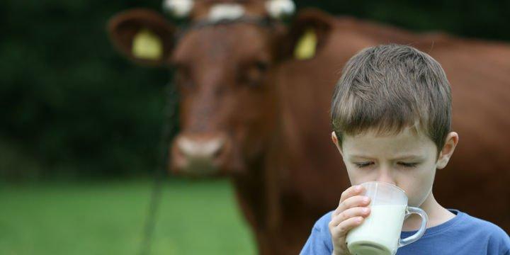 Çiğ süt referans fiyatı 2 lira 30 kuruş olarak belirlendi