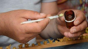 Arı sütünün kilosu 7 bin liraya satılıyor