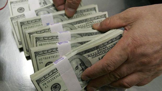 Yurt içi yerleşiklerin döviz mevduatı 348 milyon dolar azaldı