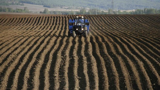 Tarım-ÜFE Eylül'de arttı