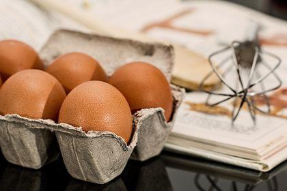 Yumurta ve tavuk eti üretimi Eylül'de arttı