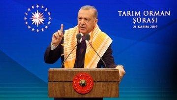 Cumhurbaşkanı Erdoğan, Tarım Şurası'ndan çıkan sonuçları ...