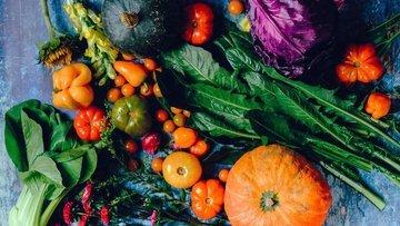 Gıda fiyatlarındaki artış insani krizi tetikleyebilir