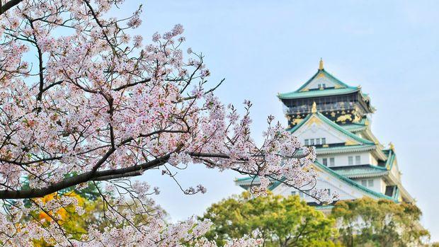 Japonya 3. çeyrekte güçlü iç taleple yüzde 1.8 büyüdü