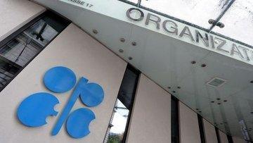OPEC'in ham petrol üretimi Kasım'da azaldı